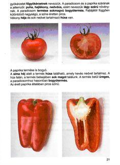 4. feladat Stuffed Peppers, Vegetables, Food, Stuffed Sweet Peppers, Hoods, Vegetable Recipes, Meals, Stuffed Pepper, Veggies