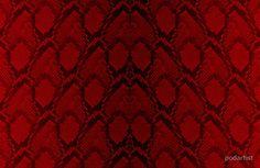 Red and Black Python Snake Skin