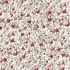 Cotton Flower Domburg 3