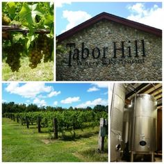 Tabor hill winery near Lake Michigan- another place my momma recommended (but its probably too expensive...)