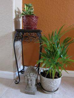 Indoor/outdoor plants!