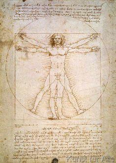 Leonardo da Vinci - Proportions of the human figure, c.1492