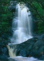 Waterfall by the petroglyphs, Reef Bay, St John US Virgin Island