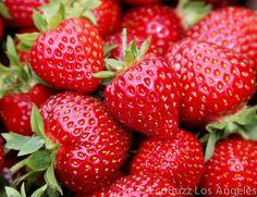 Strawberries, căpșuni, fraises, Erdbeeren, fragole, fresas, jordbær, szamóca, فراولة, 딸기, клубника