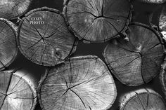 Black wood Art Home Decor is part of Wood wall art - Welcome to Office Furniture, in this moment I'm going to teach you about Black wood Art Home Decor Black Wood, White Wood, Black And White, Nature Prints, Art Nature, Types Of Printer, Tree Print, Black Decor, Shabby Chic Furniture