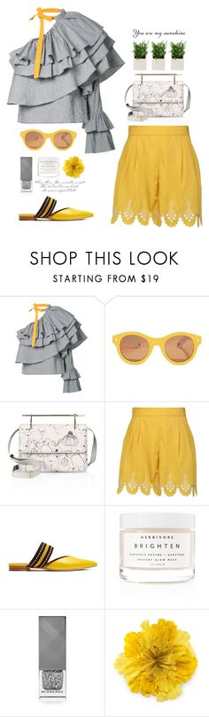 """Summer Sunshine"" by catchsomeraes on Polyvore featuring Rosie Assoulin, Lucy Folk, M2Malletier, Temperley London, Roksanda, Herbivore, Burberry, Gucci, Summer and yellow"