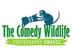 Once a year, the Comedy Wildlife Photography Awards celebrate the amazing diversity—and the overwhelming silliness—of the animal kingdom. As a comical Themed Photography, Photography Contests, Photography Awards, Photography Workshops, Hampi, Comedy Wildlife Photography, Tier Fotos, Best Sites, Natural History