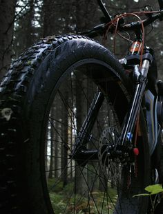Fat Bike, Hiking, Bicycle, Happiness, Journey, Camping, Nature, Pictures, Walks