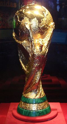 Go to a FIFA World Cup game
