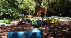 Audiorama, un oasis en Chapultepec