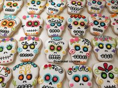 307 Best Halloween Decorated Cookies And cake pops images ...