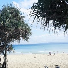 The Noosa Holiday Files from The Eye Spy Milk Bar