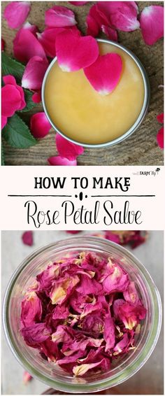 Making a homemade herbal salve is easier than you think. Herbal salves are an excellent natural first aid kit and a great alternative to chemical-based health and beauty products. Have a look at some of the best salve recipes we found. Diy Savon, Salve Recipes, Rosehip Recipes, How To Make Rose, Healing Herbs, Wound Healing, Homemade Beauty Products, Beauty Recipe, Diy Skin Care