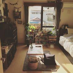 フェイクグリーン/多肉植物/多肉部♡/ウンベラータ/みんなの素敵な作品たち♡/ローテーブル…などのインテリア実例 - 2015-05-02 16:48:41 | RoomClip(ルームクリップ) Apartment Design, Apartment Living, Room Inspiration, Interior Inspiration, Studio Room, Home And Deco, Small Rooms, House Rooms, My Room