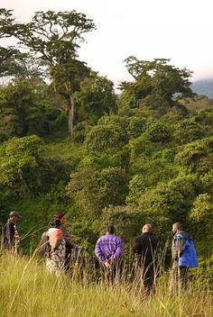 Partners in Tanzania, 6/12