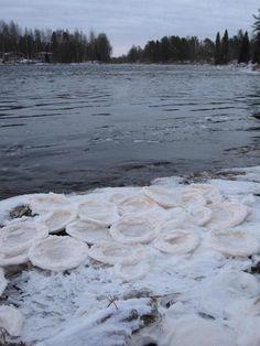 Kiiminkijoki, Finland | 23. marrask. 2015:  Kiiminkijoki ei ole vielä jäätynyt sen rantapenkereitä lukuun ottamatta.