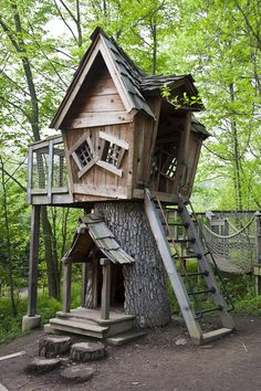 These tree houses are really beautiful. I'm sure you'll like this tree house designs, if you love nature.