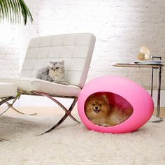 pEi Pod.    Mod and Comfy Pet Enclosures  It's a safe guess that the people behind thepEi Podare thinking about your pet as much as you are. With these totally smartegg-shaped beds,they'vecreated a nurturing cave that actually adds to a room's style. When Fido or Whiskers isn't cuddling with you, let them cozy up in this pet haven! $53.00 to $ 83.00