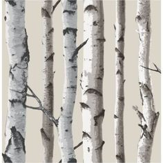 Fine Decor Birch Tree Wallpaper Natural Beige / Cream - Wallpaper from I love wallpaper UK Birch Tree Wallpaper, Look Wallpaper, Cream Wallpaper, Stone Wallpaper, Forest Wallpaper, Embossed Wallpaper, Wallpaper Samples, Peel And Stick Wallpaper, Pattern Wallpaper