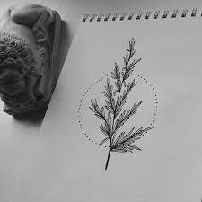 Resultado de imagem para tattoo alecrim