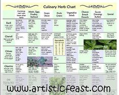 Healing Herbs and Spices Chart for the kitchen by AmalgamARTS