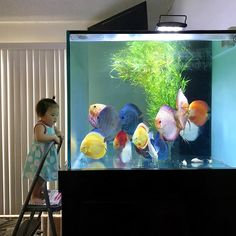 The wonders of an aquarium are endless at any age!