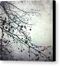 Silver Sky Canvas Print by Onedayoneimage Photography.  All canvas prints are professionally printed, assembled, and shipped within 3 - 4 business days and delivered ready-to-hang on your wall. Choose from multiple print sizes, border colors, and canvas materials.