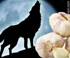 Noaptea Sfantului Andrei, traditii si obiceiuri romanesti Garden Sculpture, Moose Art, Horses, Halloween, Romania, Outdoor Decor, Animals, Country, Knowledge