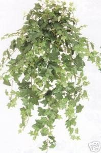 46 Inch Artificial Oxford Ivy Garland Bush >>> Review more details here (This is an amazon affiliate link. I may earn commission from it)