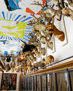 8/ Musée de la Chasse et de la Nature. Even if you don't like animals, you will love this chic jewel box of a museum, located in the Marais district of Paris.