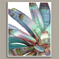 Imperial Bromeliad Watercolor Set of 2 Diptych by TheScarletPeony