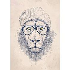 Affiche d'art Balasz Solti Cool Lion BALIBART - Lifestyle