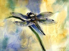 Dragonfly Watercolor Painting  - Alfred Ng