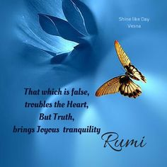 That which is false              troubles the Heart,but Truth brings Joyous tranquility ~ Rumi
