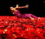 Dress rehearsals for Tanztheater Wuppertal Pina Bausch: World Cities 2012