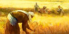 Trabajadores en un campo de trigo