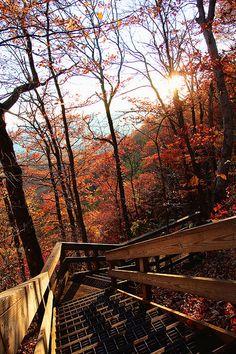 Blue Ridge, #Georgia