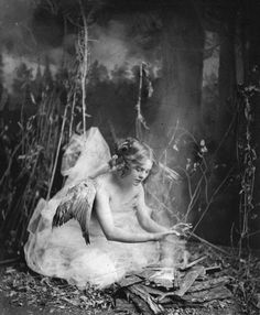 Angel in the Woods Jennie Rooney by Ephraim Burt Trimpey Baraboo Wisconsin 1930 Wisconsin Historical Society Fairy Dust, Fairy Land, Fairy Tales, Forest Fairy, Vintage Photographs, Vintage Photos, Vintage Cards, Vintage Postcards, Dragons