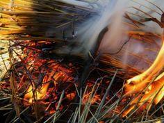 extinguish the fire