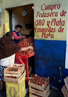 strawberry vendors, Mexico