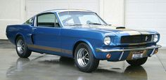 1966 Ford Mustang Hertz Shelby G. 350 is a Sapphire Blue Gem Photo & Image Gallery Ford Mustang Shelby Gt, Mustang Fastback, Mustang Cars, Ford Gt, Shelby Gt500, Mustang 1964, Classic Hot Rod, Classic Cars, American Muscle Cars