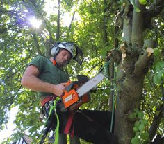 #Tree #surgeons are anyone who would provide you with services related to trees. This might sound a bit nonsensical to you but it is a very common thing. Have you ever been in a situation where your trees was getting into your home as it had spread out a lot? Or maybe you were having problem with some particular parts of a shrub? In all these cases it is the tree surgeons Slough that will be able to come to your rescue.