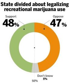 Half of Mass. voters OKAY with legalized cannabis
