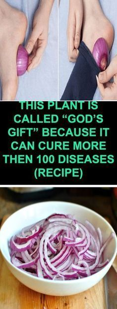 """THIS PLANT IS CALLED """"GOD'S GIFT"""" BECAUSE IT CAN CURE MORE THEN 100 DISEASES (RECIPE) – MayaWebWorld"""