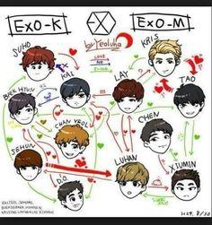 Exo's relation chart ^^