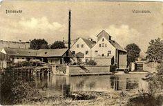 Timisoara - Moara cu aburi Pannonia - inainte de 1900