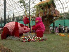 lalbagh botanical garden, Bangalore  http://www.carltonleisure.com/travel/flights/first-class/india/bangalore/edinburgh/