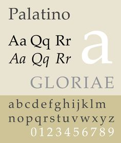 Palatino is a free and usable system font. See this specimen, sample for it's style. Selection: www.rotterdam-vormgeving.nl