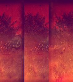 There Grows A Tree by aproudlove, via Flickr | #mosaicmontagemonday #montage #collage #orange #yellow #red #iphoneography