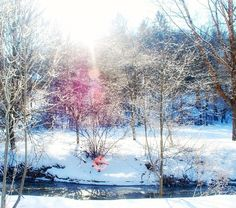 ❄❄❄ Slate Run Creek running through campus.  #H2P #Pitt @laurelhighlands #Pennsylvania #Winter #Photography #Scenic